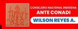 Wilson Reyes Araya